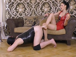 Astonishing carnal knowledge integument Stockings craziest ever seen